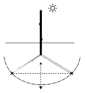 external image el-palo-2.JPG